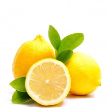 LEMON BAG 6ct