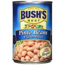 BUSHS BEANS PINTO 454g