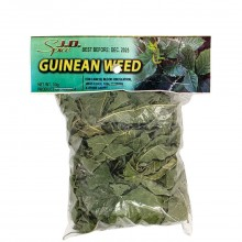 JD SPICE GUINEAN WEED 10g