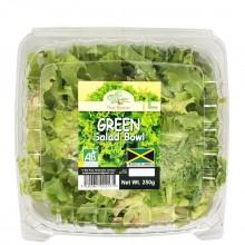FOOD BASKET GREEN SALAD BOWL 250g