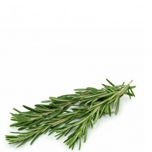 QUALITY HARVEST ROSEMARY 25g